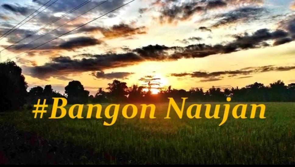 Bangon Naujan